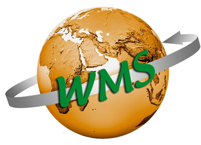 WMS Technology Group